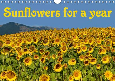 Sunflowers for a year (Wall Calendar 2019 DIN A4 Landscape), Anke van Wyk - www.germanpix.net