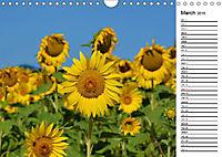 Sunflowers for a year (Wall Calendar 2019 DIN A4 Landscape) - Produktdetailbild 3