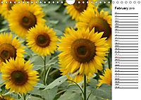 Sunflowers for a year (Wall Calendar 2019 DIN A4 Landscape) - Produktdetailbild 2