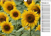 Sunflowers for a year (Wall Calendar 2019 DIN A4 Landscape) - Produktdetailbild 2
