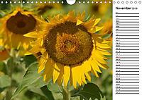 Sunflowers for a year (Wall Calendar 2019 DIN A4 Landscape) - Produktdetailbild 11