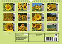 Sunflowers for a year (Wall Calendar 2019 DIN A4 Landscape) - Produktdetailbild 13