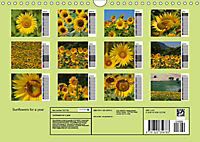 Sunflowers for a year (Wall Calendar 2019 DIN A4 Landscape) - Produktdetailbild 13