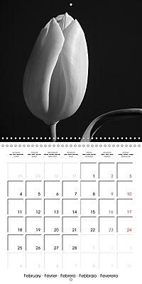 Sunlight impressions (Wall Calendar 2019 300 × 300 mm Square) - Produktdetailbild 2