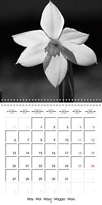 Sunlight impressions (Wall Calendar 2019 300 × 300 mm Square) - Produktdetailbild 5