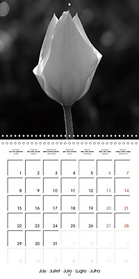 Sunlight impressions (Wall Calendar 2019 300 × 300 mm Square) - Produktdetailbild 7