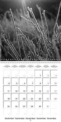 Sunlight impressions (Wall Calendar 2019 300 × 300 mm Square) - Produktdetailbild 11