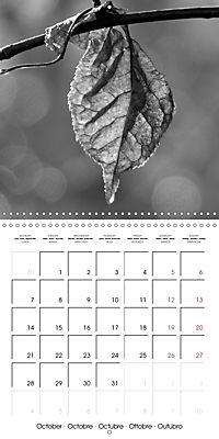 Sunlight impressions (Wall Calendar 2019 300 × 300 mm Square) - Produktdetailbild 10