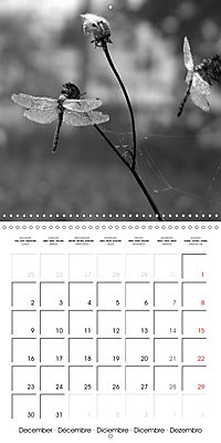 Sunlight impressions (Wall Calendar 2019 300 × 300 mm Square) - Produktdetailbild 12