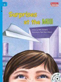 Surprises at the Mill, Rob Jordens