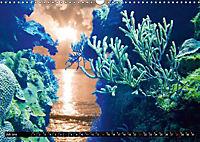 Surreale Unterwasserwelt (Wandkalender 2019 DIN A3 quer) - Produktdetailbild 7