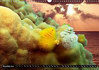 Surreale Unterwasserwelt (Wandkalender 2019 DIN A3 quer) - Produktdetailbild 11