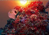 Surreale Unterwasserwelt (Wandkalender 2019 DIN A3 quer) - Produktdetailbild 12