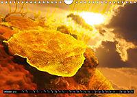 Surreale Unterwasserwelt (Wandkalender 2019 DIN A4 quer) - Produktdetailbild 10