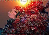 Surreale Unterwasserwelt (Wandkalender 2019 DIN A4 quer) - Produktdetailbild 12