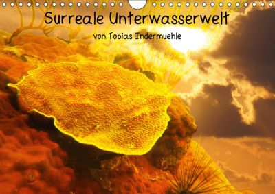 Surreale Unterwasserwelt (Wandkalender 2019 DIN A4 quer), Tobias Indermuehle