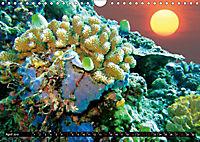 Surreale Unterwasserwelt (Wandkalender 2019 DIN A4 quer) - Produktdetailbild 4