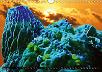 Surreale Unterwasserwelt (Wandkalender 2019 DIN A4 quer) - Produktdetailbild 6