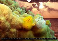 Surreale Unterwasserwelt (Wandkalender 2019 DIN A4 quer) - Produktdetailbild 11