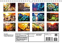 Surreale Unterwasserwelt (Wandkalender 2019 DIN A4 quer) - Produktdetailbild 13
