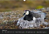 Svalbard / UK-Version (Wall Calendar 2019 DIN A3 Landscape) - Produktdetailbild 6