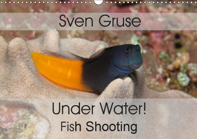 Sven Gruse Under Water! Fish Shooting (Wall Calendar 2019 DIN A3 Landscape), Sven Gruse