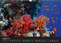 Sven Gruse Under Water! Fish Shooting (Wall Calendar 2019 DIN A3 Landscape) - Produktdetailbild 8