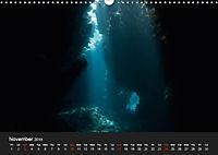 Sven Gruse Under Water! Fish Shooting (Wall Calendar 2019 DIN A3 Landscape) - Produktdetailbild 11
