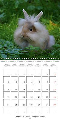 Sweet Bunny (Wall Calendar 2019 300 × 300 mm Square) - Produktdetailbild 6