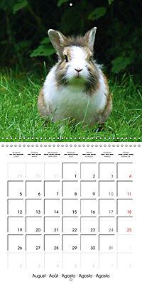 Sweet Bunny (Wall Calendar 2019 300 × 300 mm Square) - Produktdetailbild 8