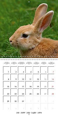 Sweet Bunny (Wall Calendar 2019 300 × 300 mm Square) - Produktdetailbild 7
