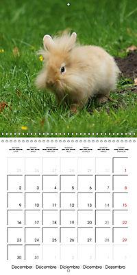 Sweet Bunny (Wall Calendar 2019 300 × 300 mm Square) - Produktdetailbild 12