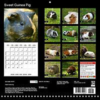 Sweet Guinea Pig (Wall Calendar 2019 300 × 300 mm Square) - Produktdetailbild 13