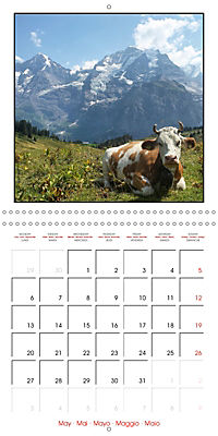 Switzerland 2019 (Wall Calendar 2019 300 × 300 mm Square) - Produktdetailbild 5