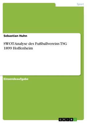 SWOT-Analyse des Fussballvereins TSG 1899 Hoffenheim, Sebastian Huhn