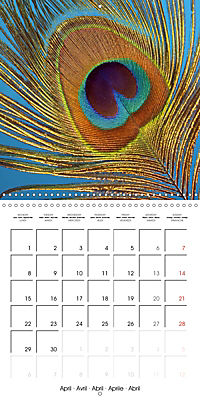 Symbol of beauty (Wall Calendar 2019 300 × 300 mm Square) - Produktdetailbild 4