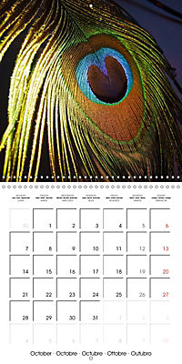 Symbol of beauty (Wall Calendar 2019 300 × 300 mm Square) - Produktdetailbild 10