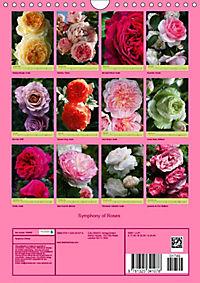 Symphony of Roses (Wall Calendar 2019 DIN A4 Portrait) - Produktdetailbild 13