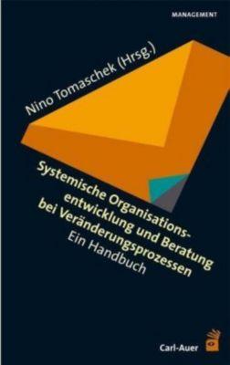 Systemische Organisationsentwicklung und Beratung bei Veränderungsprozessen