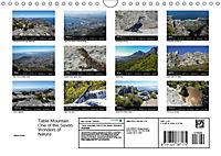 Table Mountain One of the Seven Wonders of Nature (Wall Calendar 2019 DIN A4 Landscape) - Produktdetailbild 13
