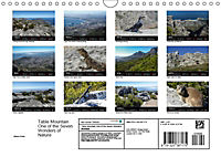 Table Mountain One of the Seven Wonders of Nature (Wall Calendar 2019 DIN A4 Landscape) - Produktdetailbild 13