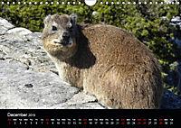 Table Mountain One of the Seven Wonders of Nature (Wall Calendar 2019 DIN A4 Landscape) - Produktdetailbild 12