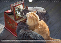 Taffe Begegnungen-Drei Waldkatzen auf Abenteuerreisen (Wandkalender 2019 DIN A4 quer) - Produktdetailbild 2