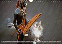 Taffe Begegnungen-Drei Waldkatzen auf Abenteuerreisen (Wandkalender 2019 DIN A4 quer) - Produktdetailbild 5
