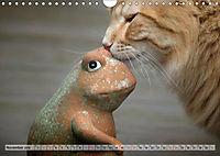Taffe Begegnungen-Drei Waldkatzen auf Abenteuerreisen (Wandkalender 2019 DIN A4 quer) - Produktdetailbild 11