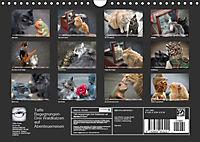 Taffe Begegnungen-Drei Waldkatzen auf Abenteuerreisen (Wandkalender 2019 DIN A4 quer) - Produktdetailbild 13