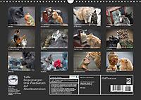 Taffe Begegnungen-Drei Waldkatzen auf Abenteuerreisen (Wandkalender 2019 DIN A3 quer) - Produktdetailbild 13