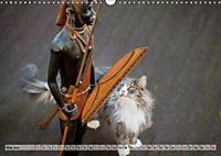 Taffe Begegnungen-Drei Waldkatzen auf Abenteuerreisen (Wandkalender 2019 DIN A3 quer) - Produktdetailbild 5