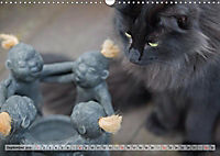 Taffe Begegnungen-Drei Waldkatzen auf Abenteuerreisen (Wandkalender 2019 DIN A3 quer) - Produktdetailbild 9