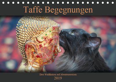 Taffe Begegnungen-Drei Waldkatzen auf Abenteuerreisen (Tischkalender 2019 DIN A5 quer), Viktor Gross